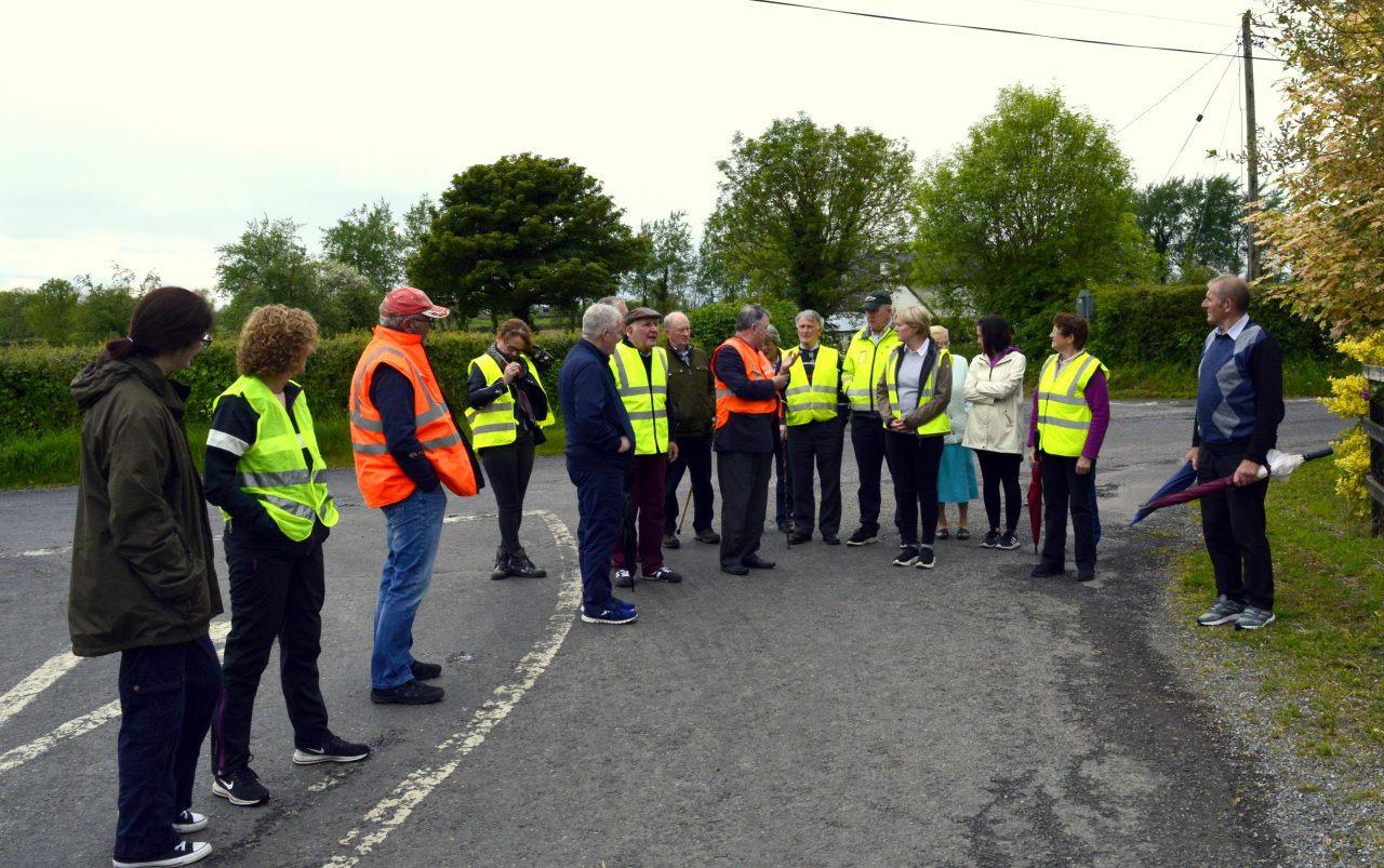 Walking the Kilbreedy road with Peter Meskell: Ardmayle Historical Society.